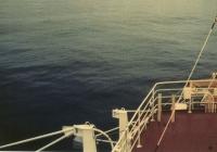 Балл по шкале Бофорта 1 - Тихий ветер