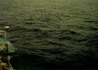 Балл по шкале Бофорта 4 - Умеренный бриз