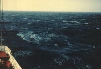 Балл по шкале Бофорта 7 - Крепкий ветер