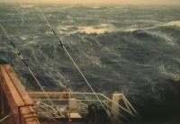 Балл по шкале Бофорта 8 - Очень крепкий ветер