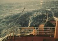 Балл по шкале Бофорта 10 - Сильный шторм