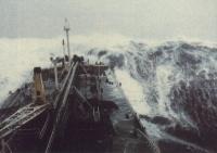 Балл по шкале Бофорта 12 - Ураган